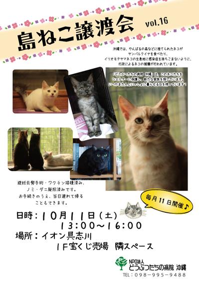 島ねこ譲渡会ポスター.jpg